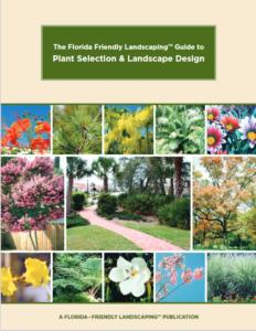 florida landscaping image